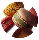 You haven't lived until you have tasted a macaroon by Pierre Herme!