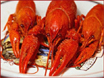 Celebrating Crayfish in Finland