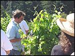 California Wine Boot Camp
