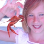 Crawfish Festival in Arkansas