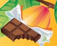 Chocolate: Seed to Sweet