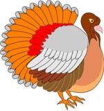 Eldon Turkey Festival