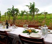 A Farm Dinner in Jamaica?
