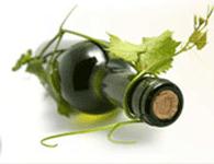 Vendemmia Wine Festival