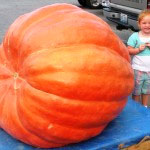 Elkin's Pumpkin Festival