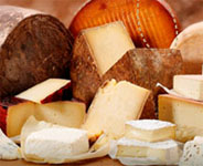 Wisconsin Cheese Festival
