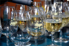 Albariño Wine Fest in Spain