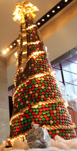 A Christmas Tree of Macarons