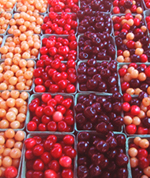 Summer Harvest Cherry Fest