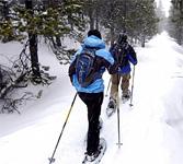 Snowshoe, Wine & Brew Trail