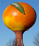 World's Largest Peach