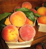 Cobden Peach Festival