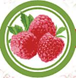 Raspberry Days