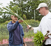Farm to Fork on Nantucket Island