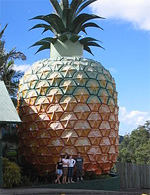 A 52-Foot-Tall Pineapple? Why Not?