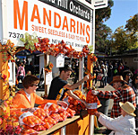 Mountain Mandarin Festival in California