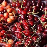 Michigan's National Cherry Festival