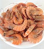 Biloxi Seafood Fest in Mississippi