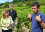 Burgundy Bootcamp
