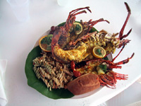 """Crustaceans at Scilly Cay <em>(Photo by Susan McKee)</em>"""" title=""""scillycay"""" width=""""200″ height=""""150″ class=""""size-full wp-image-1052″ /><p class="""