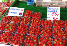 norway_strawberries