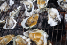 california_valleyford_oysterpalosa
