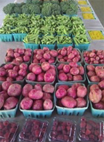 maryland_deberry-produce