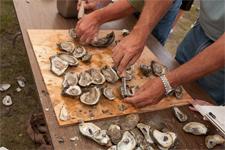 northcarolina_oysterfest