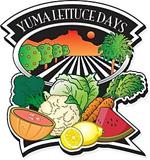 california_yuma_lettuce