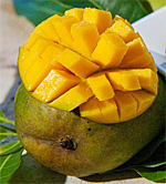 Mango Madness in the Caribbean
