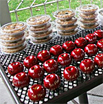 Glastonbury Apple Harvest Festival, Connecticut
