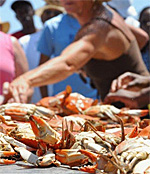 Houston Crab Festival, Brookside, Texas