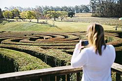Bago Winery, New South Wales, Australia