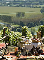 French Wine Explorers, Online