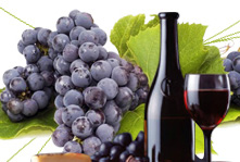 Winemakers Dinners in the British Virgin Islands