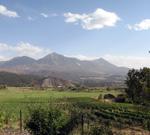 West Elks Wine Trail