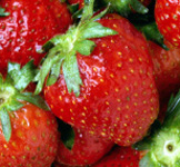 West Cape May Strawberry Festival
