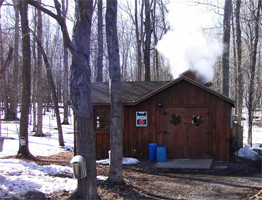 Maple Syrup Time in New York State