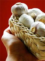 An Art Fair and Garlic Fest