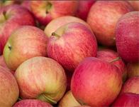September Means Apple Festivals