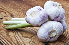 Buchlovice Garlic Festival
