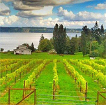 Northwest Wine & Cheese Tour