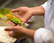 Taste Epcot:  A Food & Wine Festival