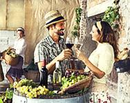 New Jersey Wine Week