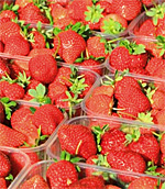 Strawberries in the South of France