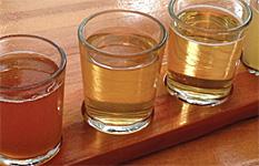 Hard-Pressed Cider Fest in Oregon