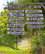 Oregon's Hood River County Fruit Loop
