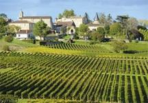 Gastronomy + Wine + European Cruise