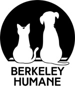Pints for Paws: Craft Beer Festival in Berkeley