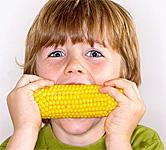 East Prairie Sweet Corn Festival in Missouri